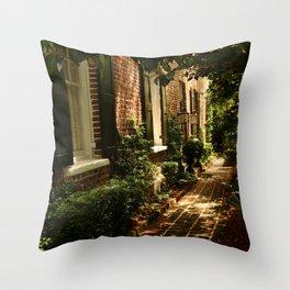 Beautiful Charleston Alley Throw Pillow