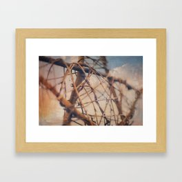 Tangled Without Words Framed Art Print