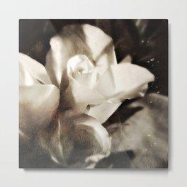 roses tintype Metal Print