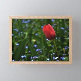 Forget Not the Tulip Framed Mini Art Print