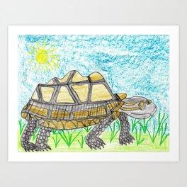 AldabraTortoise Art Print
