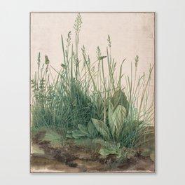 Albrecht Durer - The Large Piece of Turf Canvas Print
