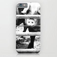 Pig Farm 2 Slim Case iPhone 6s