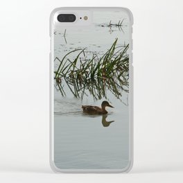 Young Duck swimming in the river Clear iPhone Case