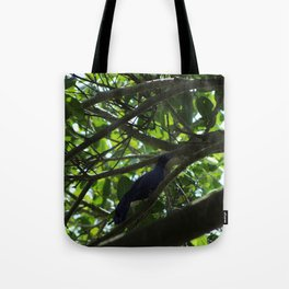 Great Tailed Grackle near Tulum Tote Bag