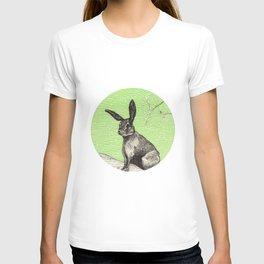 A rabbit T-shirt