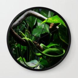 Vine Snake Wall Clock