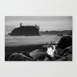 beach fire Canvas Print
