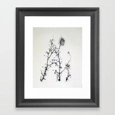 Gunpowder Branches Framed Art Print