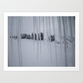 February: 2 Art Print
