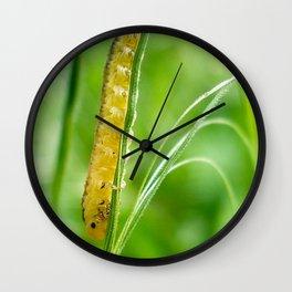 Magic Grass - Caterpillar - Macro Wall Clock