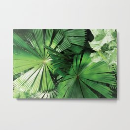 Tropical Patterns Metal Print