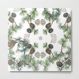 Let Love Grow, Pinecone Close-up Metal Print