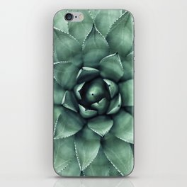 Macro Succulent iPhone Skin