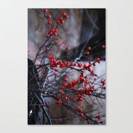 Winter Berries 01 Canvas Print