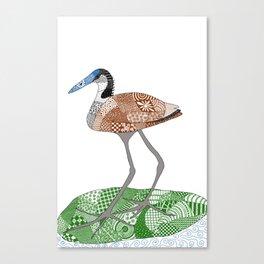 Jacana Canvas Print