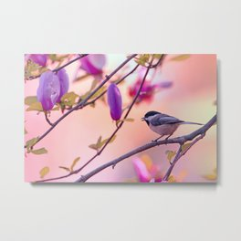 Sweet Magnolia Song Metal Print