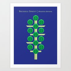 Vegetable: Brussels Sprout Blue Art Print