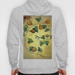 Vintage Botanical Collage, Autumn Pumpkins Hoody