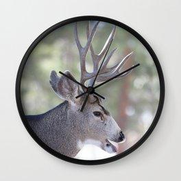 Watercolor Deer, Mule 03, RMNP, That's a Good One Wall Clock