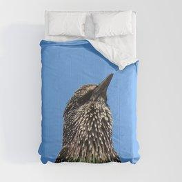 Starling Portrait Comforters