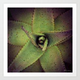 Succulent cactus close-up - Aloe Photography #Society6 Art Print