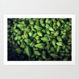 Hops by the bushel. Art Print