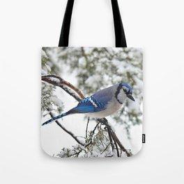 Beautiful Blue Jay Tote Bag