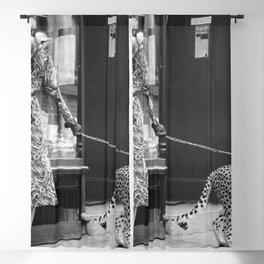 Woman with Cheetah, Phyllis Gordon, with her pet Kenyan cheetah, Paris, France black and white photo Blackout Curtain
