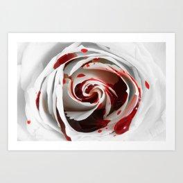 Bleeding Rose Macro Art Print