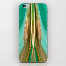 Catch The Dream iPhone & iPod Skin