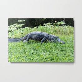 Jurassic Flower Metal Print