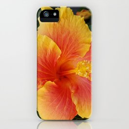Hybiscus iPhone Case