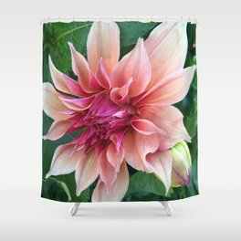 438 - Dahlia Shower Curtain