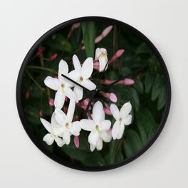 Delicate White Jasmine Blossom with Green Background Wall Clock