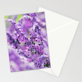 Longwood Gardens Autumn Series 159 Stationery Cards