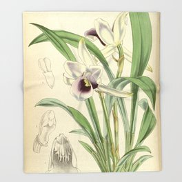 Cochleanthes discolor Orchid 1855 Throw Blanket
