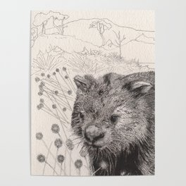 Path to wombat pool Poster