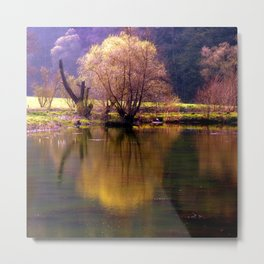 Sea and light Metal Print