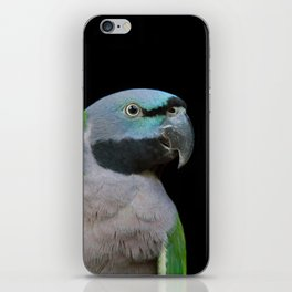 Lord Derby's parakeet iPhone Skin