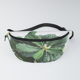 The green leaf of the Euphorbia Fanny Pack