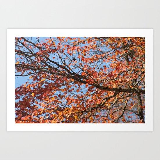 Autumn 2 Art Print