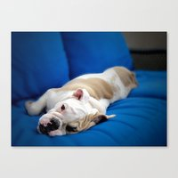 puppy Canvas Prints featuring Puppy by brushnpaper