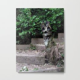 Hey There :) Metal Print