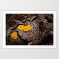 Golden Aspen Leaves Art Print