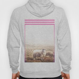 Sheep - pink graphic Hoody