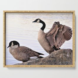 Mated Pair of Canadian Geese by Reay of Light Photography Serving Tray