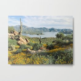 Arizona Blooms Metal Print