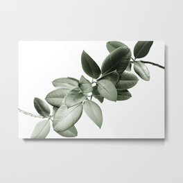 Yin Yang Ficus Glam #1 #tropical #decor #art #society6 Metal Print