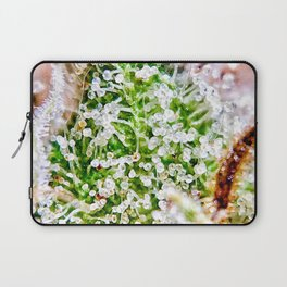Skywalker OG Kush Strain Frosty Buds Calyxes Close Up Laptop Sleeve